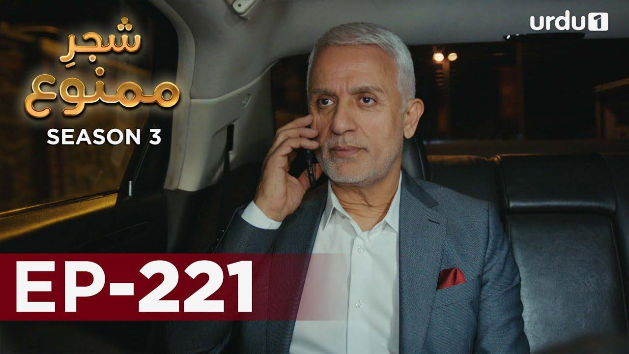 Shajar-e-Mamnu | Episode 221 | Turkish Drama  | Forbidden Fruit | Urdu Dubbing | 14 October 2021