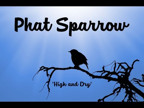 High and Dry - Phat Sparrow