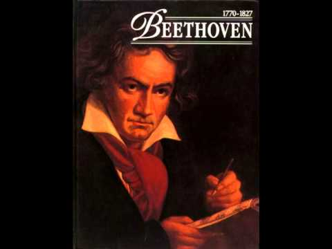 Beethoven - Symphony No. 5 in C minor 'Fate' - 1st movement