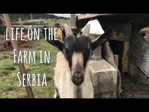 Life In Rural Serbia