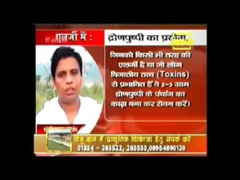 Ayurvedic Methods To Help Cure Cancer & Other Serious Infections   Dhronpushpi | Acharya Balkrishna