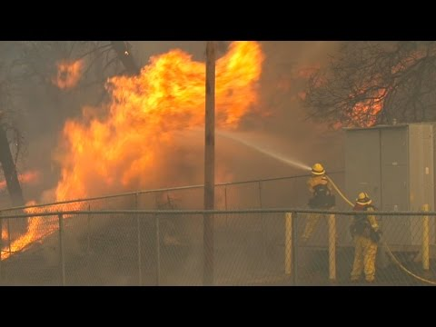KQED NEWSROOM:  Proposition 61, California Wildfires, Josh L