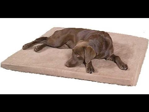 xxl extra large 55x37x4 orthopedic memory foam pet dog bed with waterproof microfiber suede cover