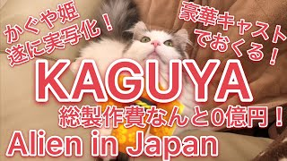 The princess in Japan was actually an alien@funny cat karin