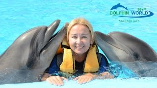 swimming with dolphins in dolphin world makadi bay hurghada egypt