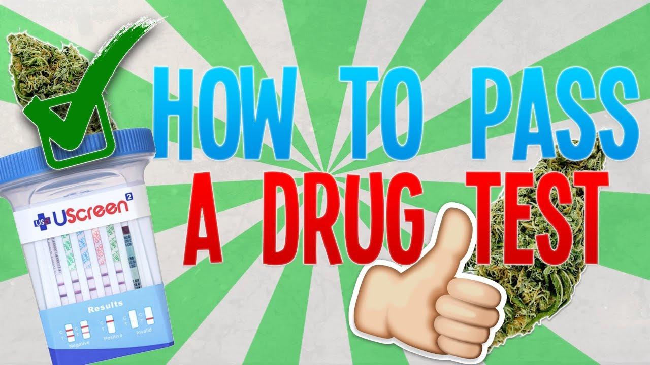 Will Adderall help you pass a marijuana (THC) drug test? | Yahoo Answers