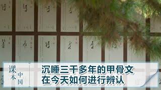 [跟着书本去旅行]沉睡三千多年的甲骨文在今天如何进行辨认| 课本中国