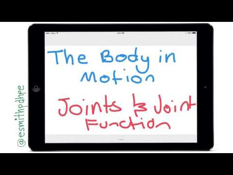 The Body In Motion - Joint Types and Joint Actions