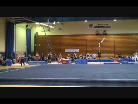 ohio gymnastics state meet 2014 level 6