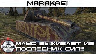Маус выживает из последних сил, почему его так все ненавидят? World of Tanks