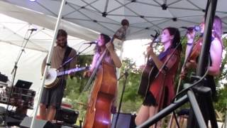 The Sweet Lillies playing in the Swallow Hill Shady Grove Picnic Series in the Four Mile Historic Pa