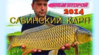 """""""САБИНСКИЙ КАРП, 2014"""" (Фильм второй)"""