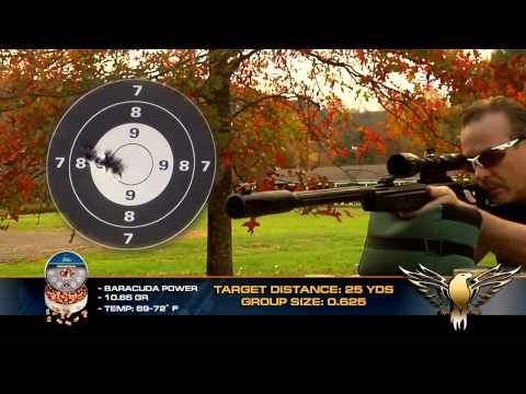 Gamo Whisper Fusion IGT air rifle - AGR Episode #106