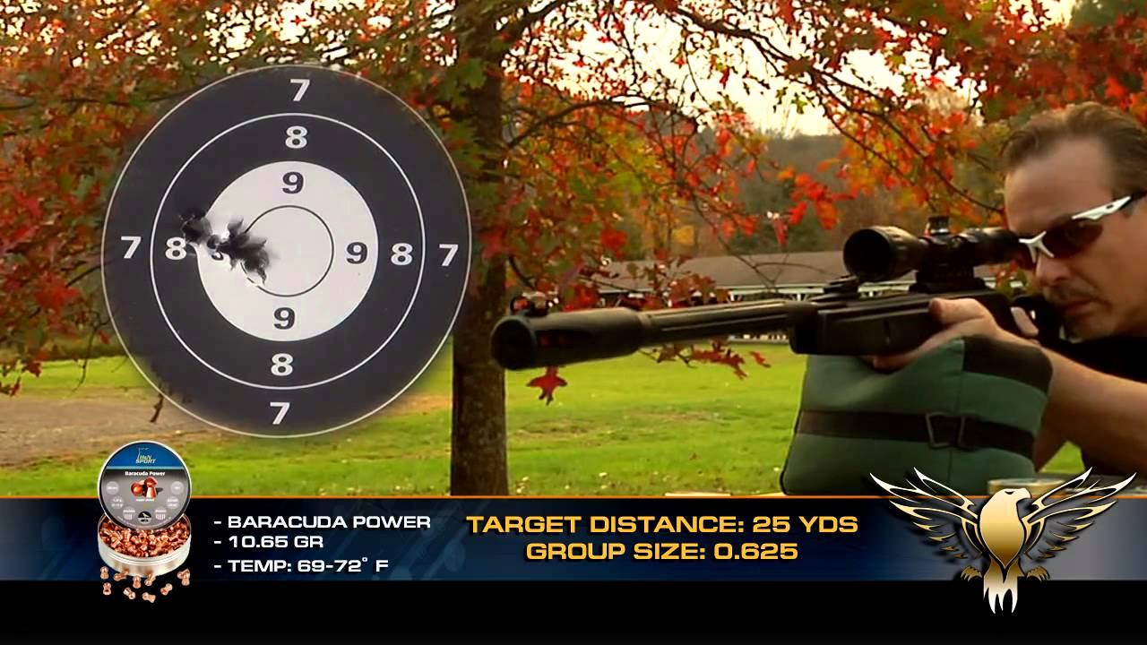 How Quiet is the Gamo Whisper Fusion Pro Pellet Gun