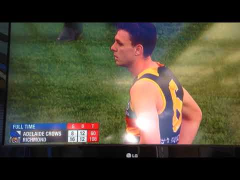Final Siren - AFL 2017 Grand Final Adelaide Crows v Richmond