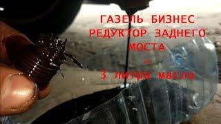 газель бизнес - замена масла в редукторе заднего моста