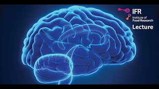 Gut bacteria and mind control: to fix your brain, fix your gut! thumbnail