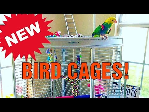 We Got NEW Bird Cages!