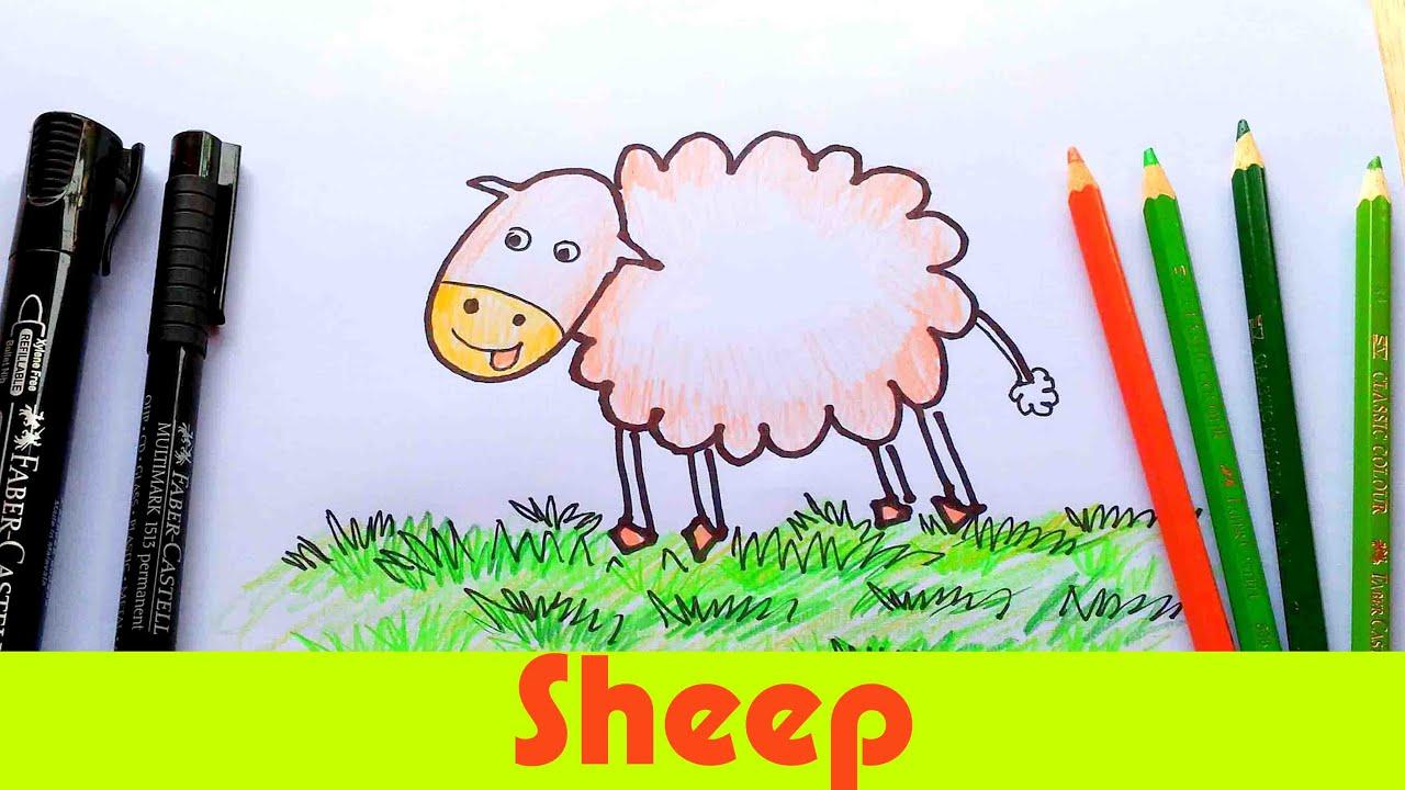 How To Draw a Sheep! Easy Cartoon Sheep Animal tutorial - For Kids ...