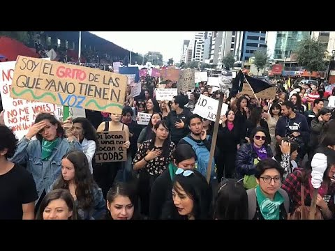 شاهد: نساء الإكوادور يتظاهرن ضد العنف الجنسي  - نشر قبل 17 ساعة