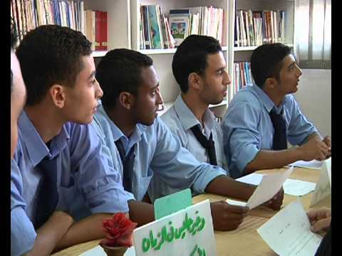 Effective School to Work Transition Project in Egypt