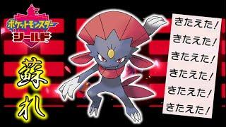 【ポケモン剣盾】ニューラよ!今こそマニューラへと進化し、ガチポケとなって蘇れ!ゆっくり達のポケットモンスターシールド part43