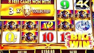 BUFFALO GOLD REVOLUTION • WIFE IS ON FIRE 🔥 MAX BET LANDING BUFFALOS • [ 4K VIDEO ]