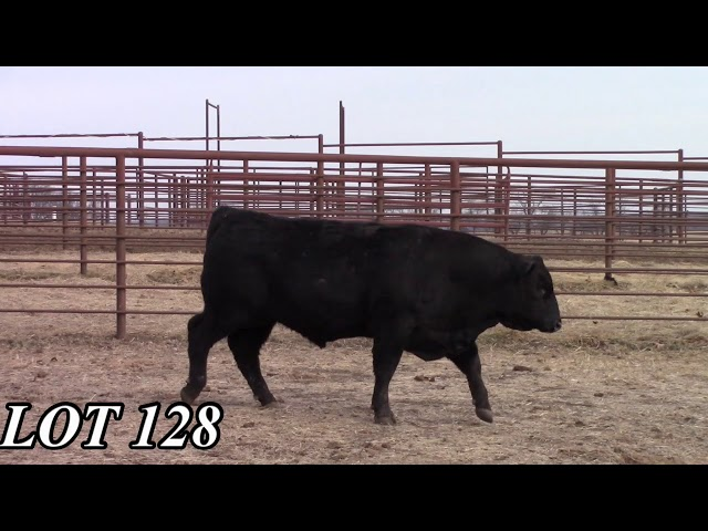 Mead Angus Farms Lot 128