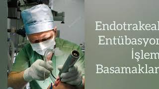 Endotrakeal Entübasyon(Airway,Endotrakeal Tüp,Laryngoskopi)/Okan Üniversitesi SHMYO Anestezi