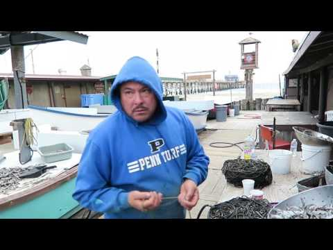 017 - Dead Fish in a Salt Bath - Dory Fleet Fish Market