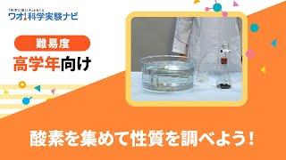 実験レシピ 酸素を集めて性質を調べよう!