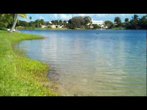 Lake in Hialeah Florida October 2012