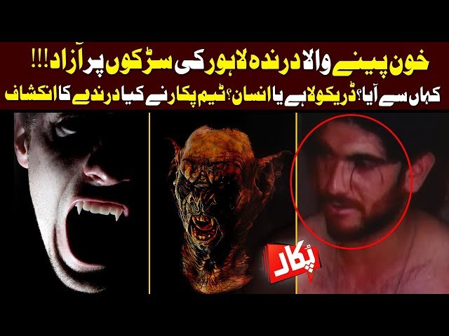 Vampire In Lahore!! Pukaar | Full Program | 22 February 2019 | Neo News