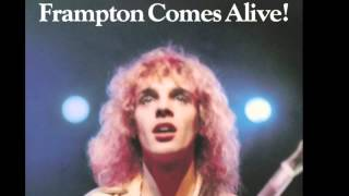 Penny For Your Thoughts - Peter Frampton