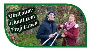 Obstbaumschnitt Crashkurs beim Profi Dominik Schreiber🍒Obstbaum richtig schneiden
