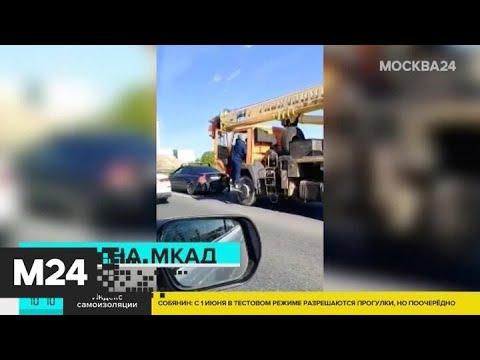 Драка произошла на юге МКАД - Москва 24