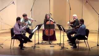 W.A. Mozart - String Quintet in G Minor, K. 516, IV. Adagio-Allegro (Kontras Quartet)