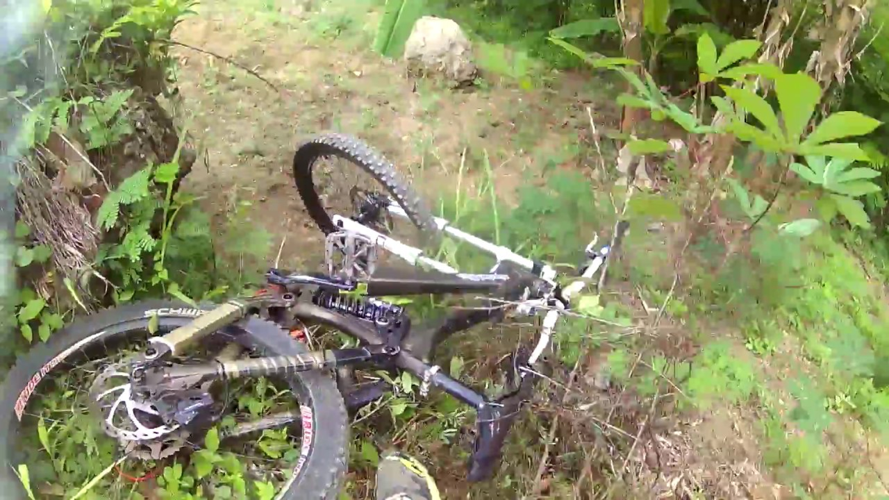 The Cat Empire Two Shoes Downhill Video