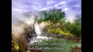 Ascend the Hill- Hallelujah What a Savior