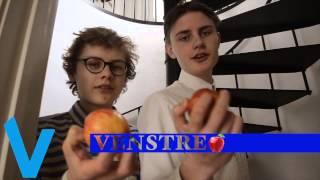 Kastanievej efterskole - Venstre valgvideo