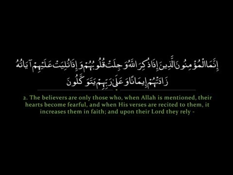 Surah Anfal | Nasser al Qatami سورة الأنفال | ناصر القطامي