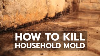 How to Kill Household Mold
