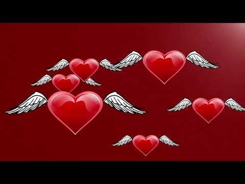 Chand ki chandni gulaboni ki pari - Delivering Love
