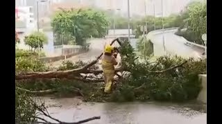 Typhoon Mangkhut leaves trail of destruction | CCTV English