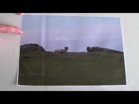 Landscape Quilts – Design – Initial Landscape Composition – The Rule of Thirds