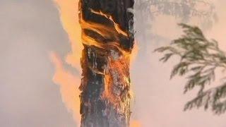 Még mindig tombol a tűz Kaliforniában