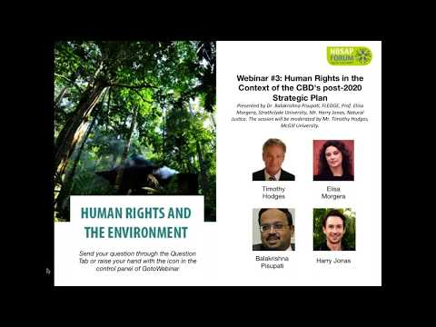 HUMAN RIGHTS AND THE ENVIRONMENT: Webinar #3: HHRR in CBD's post-2020 Strategic Plan