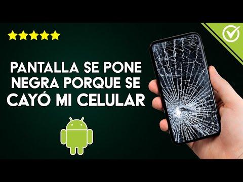 Solución: 'Pantalla se Pone Negra porque se cayó mi Celular' ¿Qué Hago?