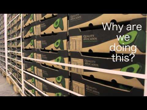 Rungwe Avocado Company - Impression Video