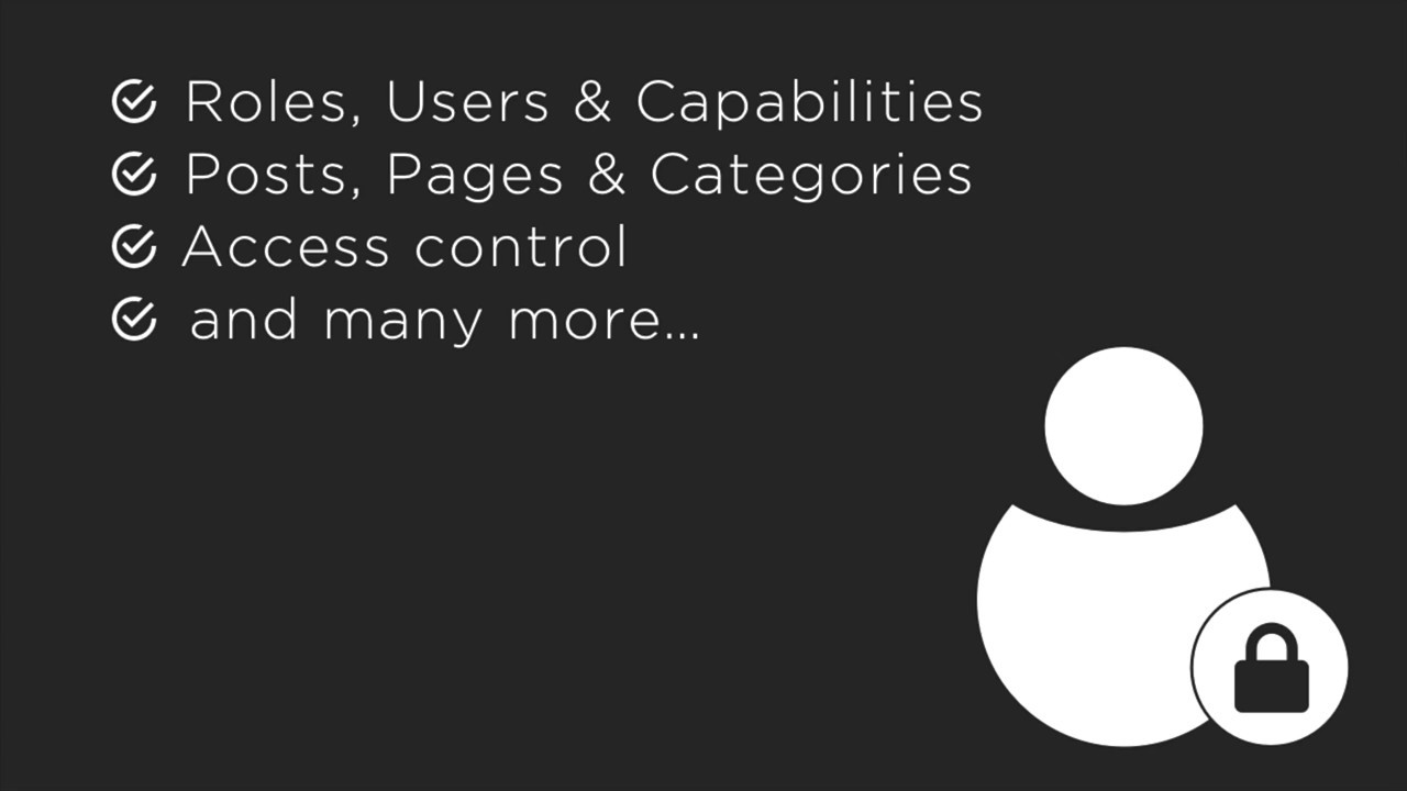 Advanced Access Manager – WordPress plugin | WordPress org
